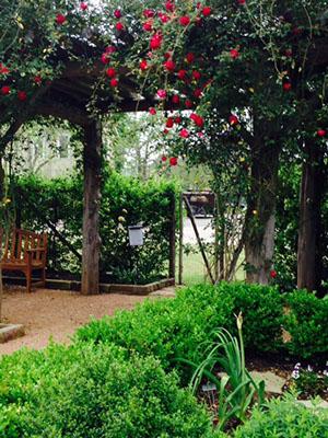 Garden TxQM